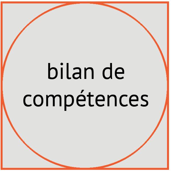 image bilan de compétences - Pépites conseil - Christine Desseaux