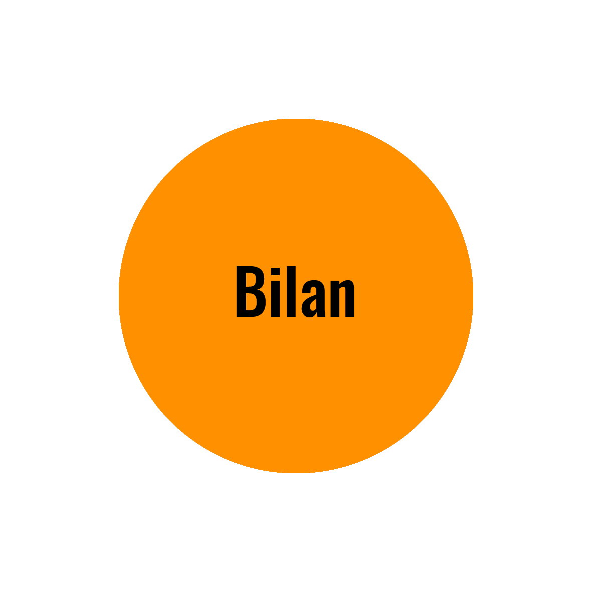 Bilan Outplacement Potentiel