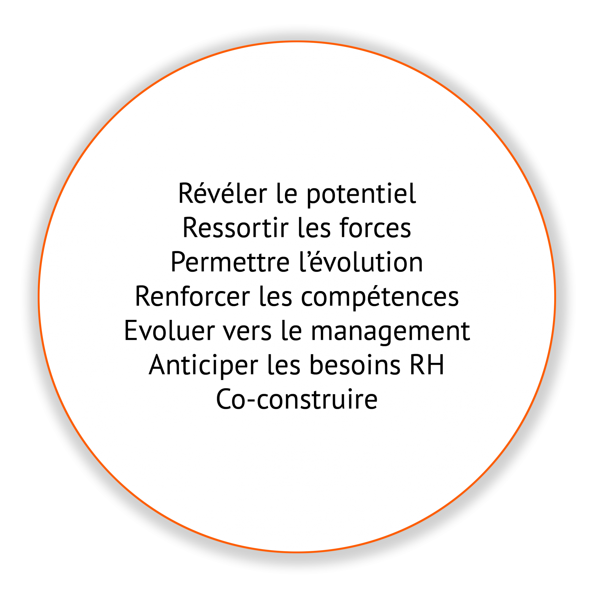 cercle potentiel - Pépites conseil - Christine Desseaux - Lille Métropole
