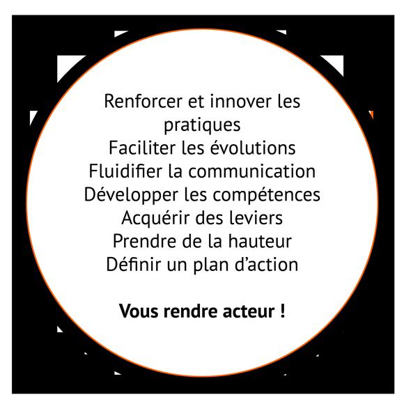 image formation compétence - Pépites conseil - Christine Desseaux