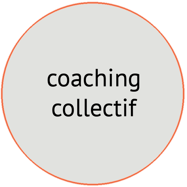 image coaching collectif - Pépites conseil - Christine Desseaux - Lille Métropole