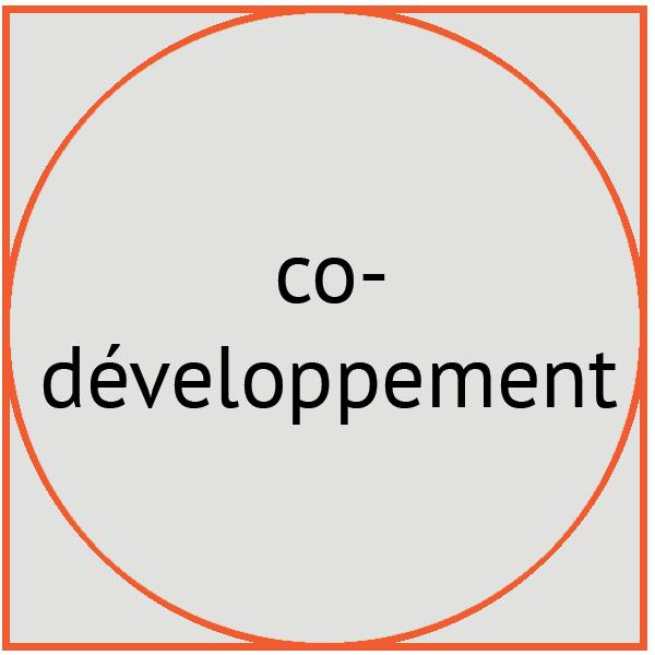 image codeveloppement - Pépites conseil - Christine Desseaux - Lille Métropole